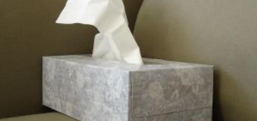 Hausmittel gegen Schnupfen