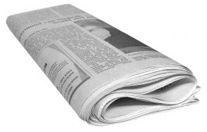 Eine Silberfischfalle ist ein Hausmittel das einfach selber gebaut werden kann - aus feuchten Zeitungen beispielsweise