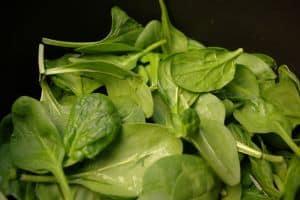 Mit Hausmitteln Heuschnupfen bekämpfen und die Ernährung verbessern.