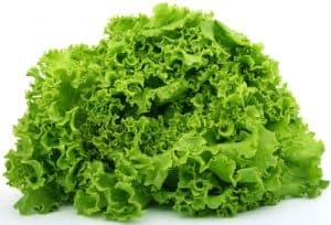 Salat ist ein natürliches Hausmittel gegen Schlafstörungen