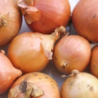 Zwiebeln helfen gegen Aphten als natürliches Hausmittel.